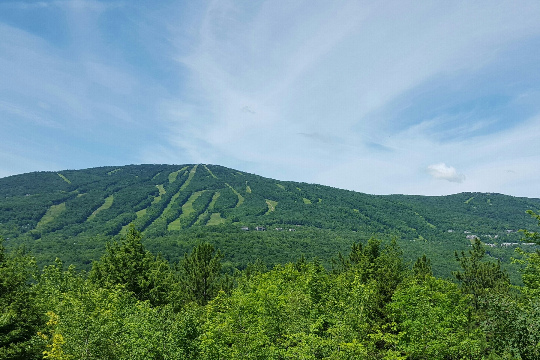 Your Okemo Mountain Resource