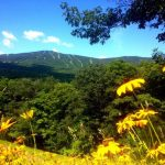 Summer view of Okemo Mountain.