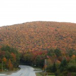 Peak Foliage at Okemo Mountain.