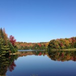 Fall Foliage - Knapp Pond